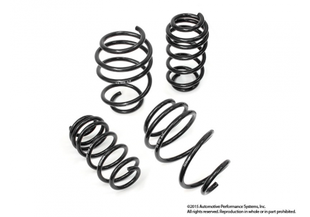 NM Engineering RS Alpha Lowering Springs